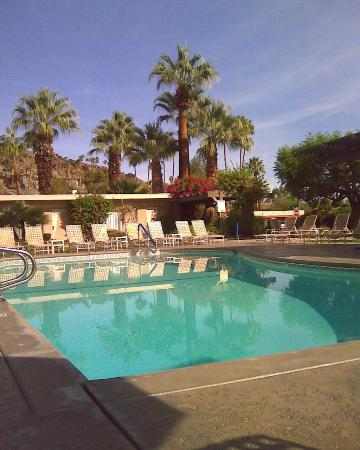 Desert Hills: Lots of pool chairs - very close to the pool and your room