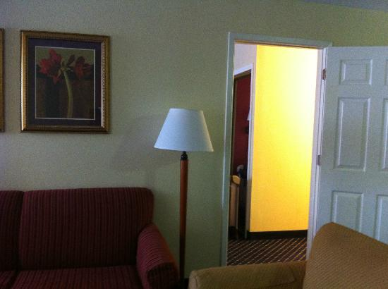 Residence Inn Arlington: View from living room area