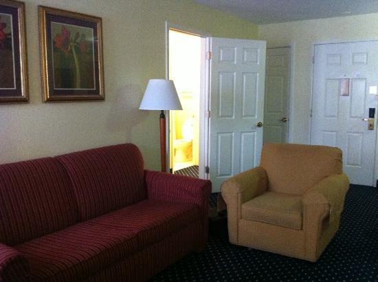 Residence Inn Arlington: View of living room from the fireplace