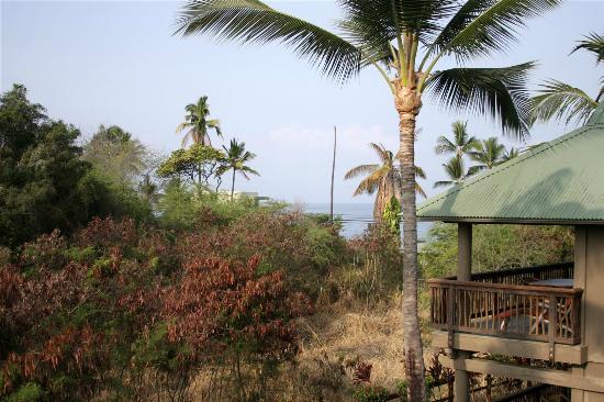 Wyndham Kona Hawaiian Resort : From the balcony 1