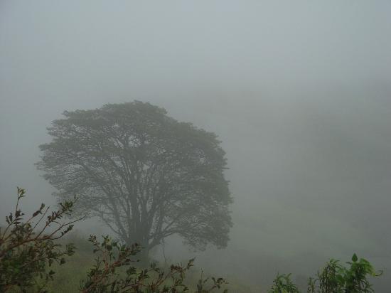 Pousada Quinta da Serra: Vista do chalé