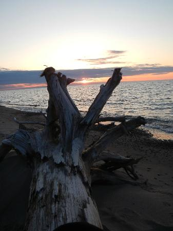 Peterson's Cottages: Exquisite sunsets...