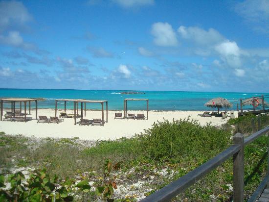 Melia Buenavista: Playa