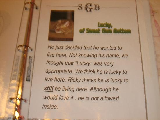 Sweet Gum Bottom Bed & Breakfast: Loved reading this in the welcome literature