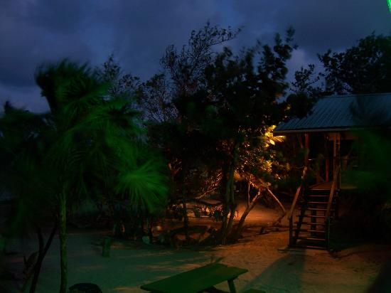 Barnacle Bill's Beach Bungalows: Colored lights on the property at night