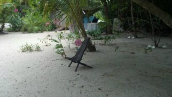 Barnacle Bill's Beach Bungalows: Wireless internet station behind the bungalow