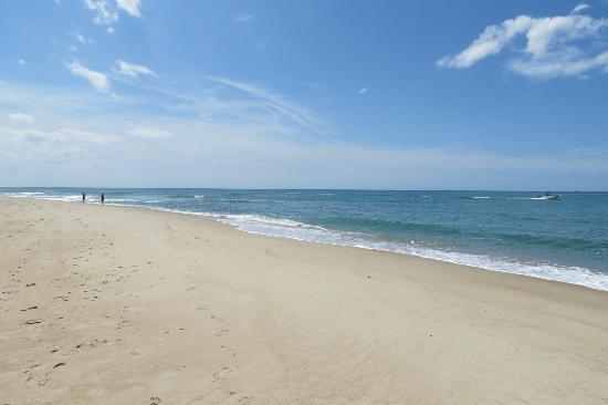 Shackleford Banks : pristine coastline