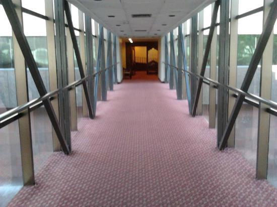 Sheraton Ambassador Hotel : El puente que conecta la piscina con los cuartos