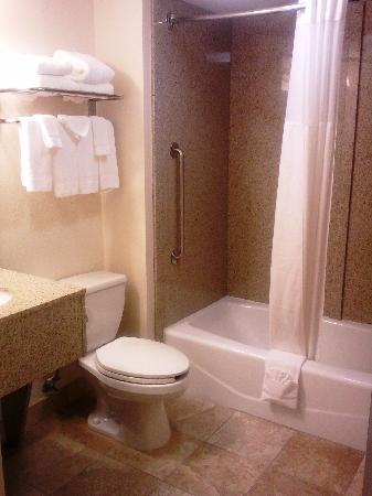 Comfort Inn: Guest Bathroom