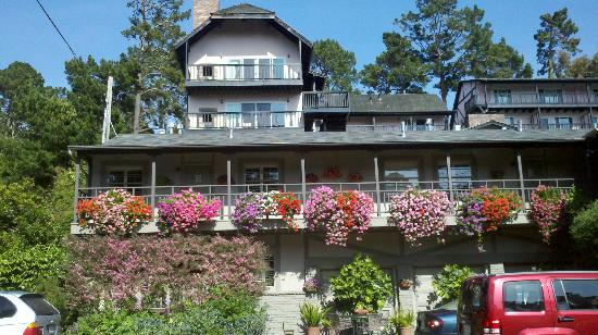 Carmel Country Inn: Beautiful flowers everywhere