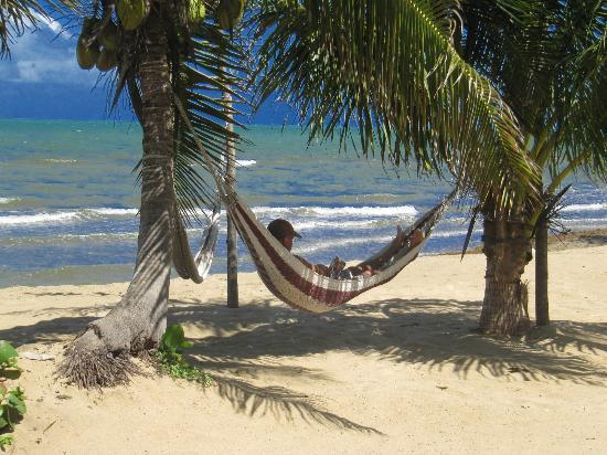 Sarkiki Villas: Relax in a hammock on the beach