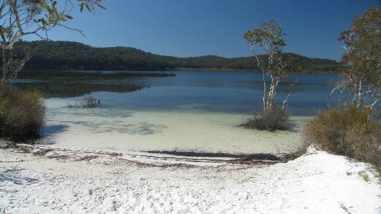 Lake Birrabeen: fine white sand makes for a beautiful swimming spot