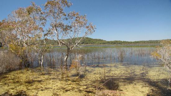 lake birrabeen