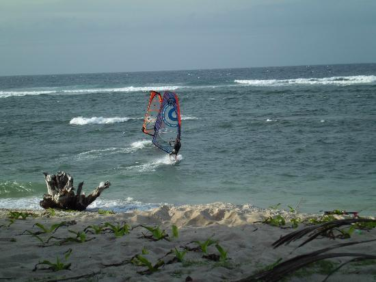 Kingfisher Resort: Windsurfing lessons with Fabrice Beaux