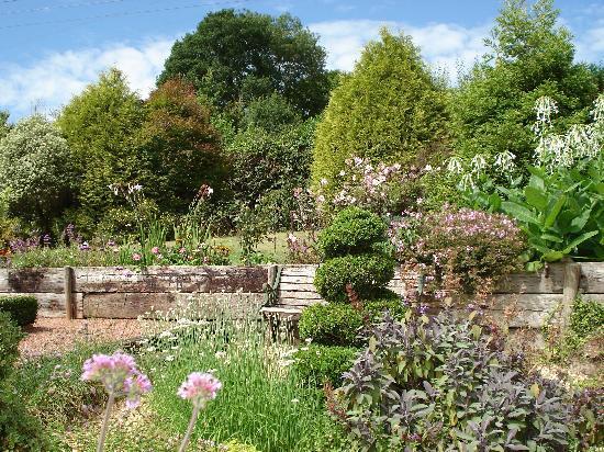 East Barton Bed & Breakfast: Garden