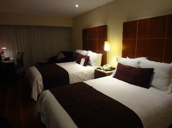 墨西哥城卡米諾雷阿爾機場飯店照片