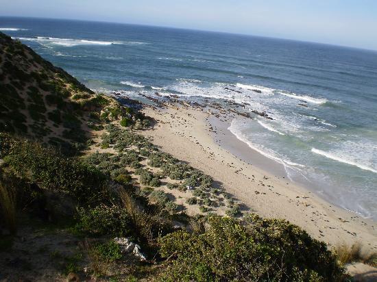 Kangaroo Island Spirits: Kangaroo Island