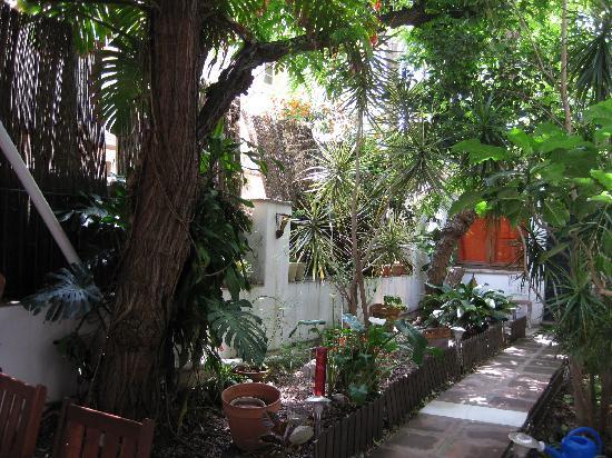 Las Acacias Hostal: Patio de Las Acacias Malaga Hostel