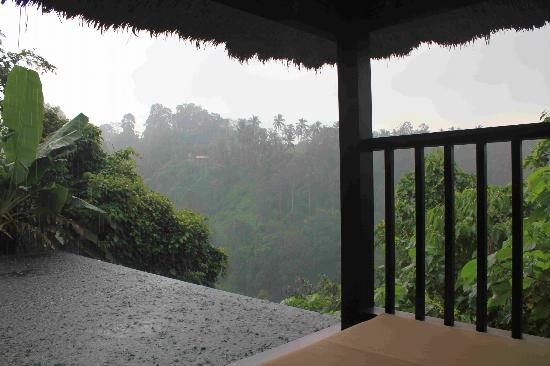Hanging Gardens of Bali: View from the room, during rain