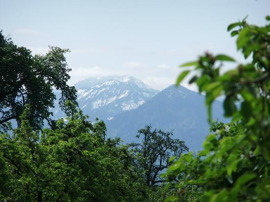 Montfort Schlössle: Blick auf schneebedecke Alpen