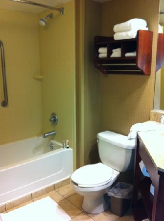 Hampton Inn Indianapolis-South: bathroom