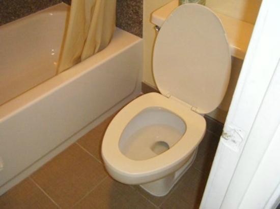 Days Inn Little River: toilet