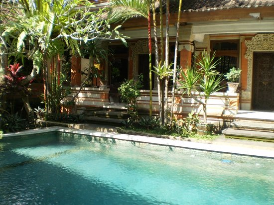 Wahyu Bungalow: Pool looking back toward rooms. Lovely!
