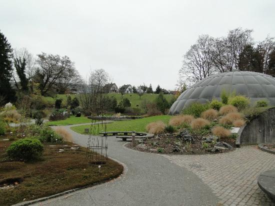 Botanical Garden (Botanischer Garten), Zurique.