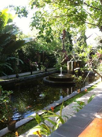 Tonys Villas & Resort: bassin du petit dej'