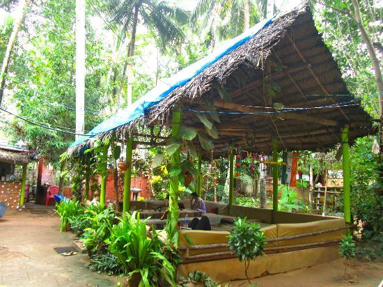 Shiva Garden: The roof