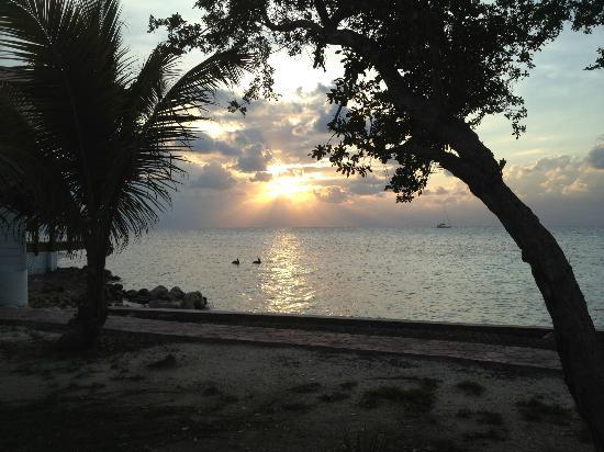 Hatchet Caye Resort : view