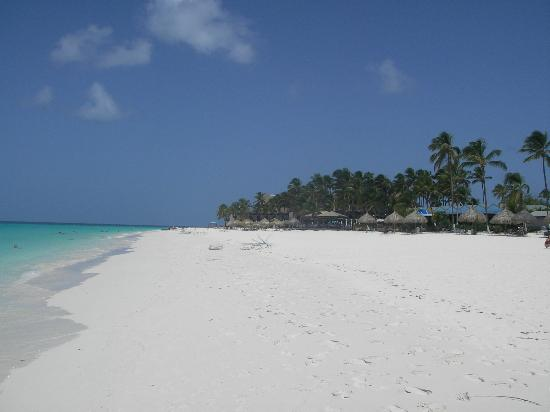 Noord, Aruba: Druif Beach, Aruba