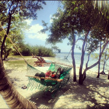 Hatchet Caye Resort: Our Beach Area