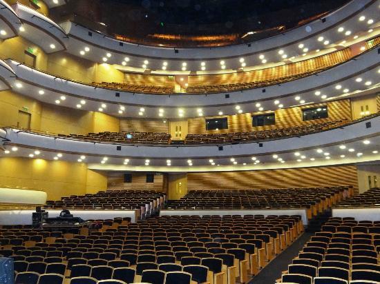 Auditorio del Sodre: Teatro