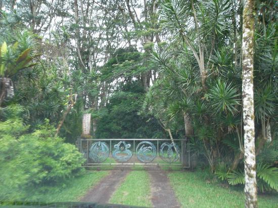 Lava Tree Tropic Inn: cancello