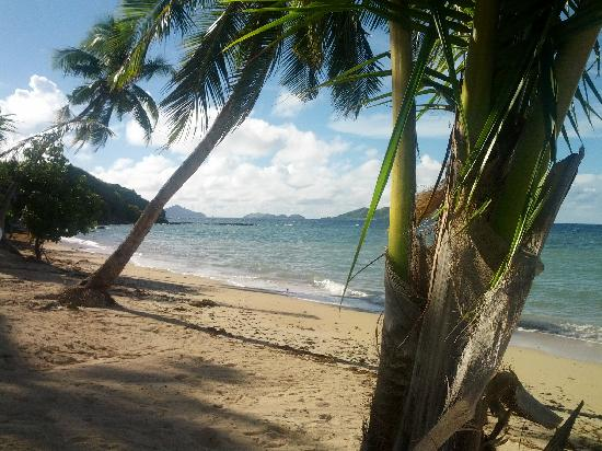 Tadrai Island Resort: On the beach