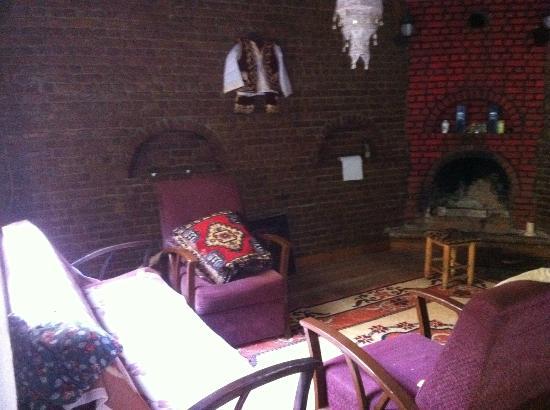 Artemis Hotel: Winter lounge area with fire place