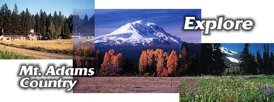 Mt Adams Lodge at the Flying L Ranch: Explore this beautiful area!