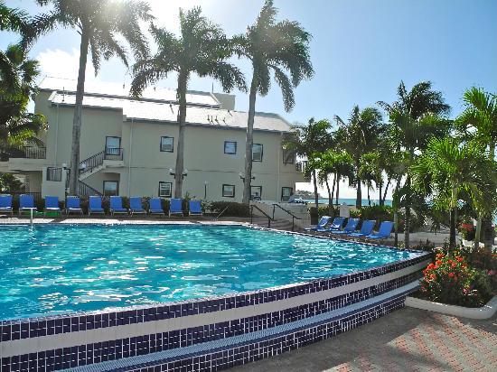 Flamingo Beach Resort : Pool Area