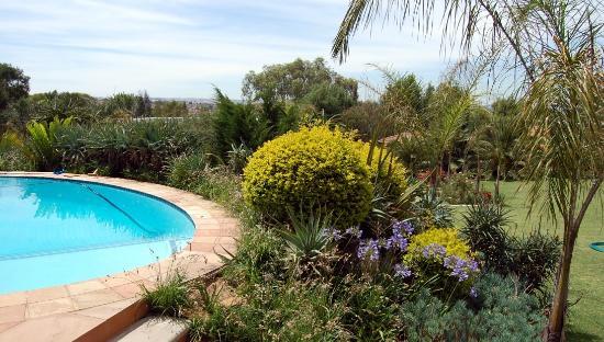 Tuareg Guest House: am Pool