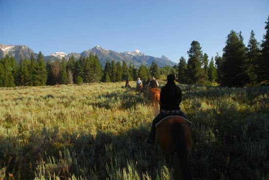 R Lazy S Ranch: one of our trail rides