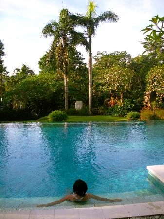 Chintamani Retreat & Spa: Relaxing in the stunning pool, can't wait to get back in that pool!