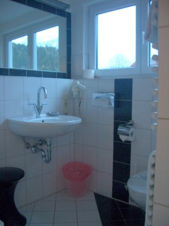 Hotel Kleiner König: il bagno