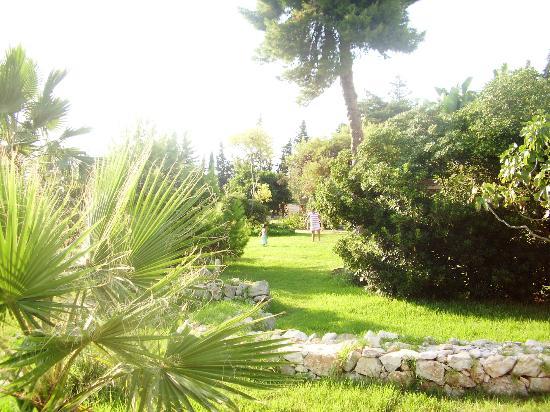 Asparano B&B: giardino
