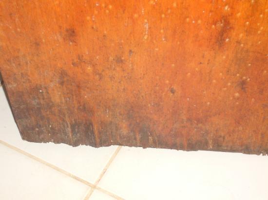 Che Lagarto Hostel Ilha Grande: porta molhada e mofada
