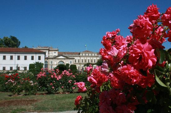 Villa Reale : La Villa vista dal Roseto