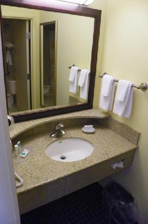 SpringHill Suites Portland Vancouver: bathroom area (with door that can be closed)