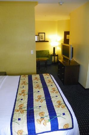 SpringHill Suites Portland Vancouver: another view of the room