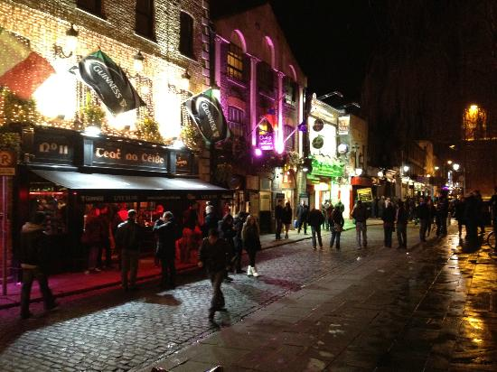 Temple Bar Hotel: The street outside the hotel