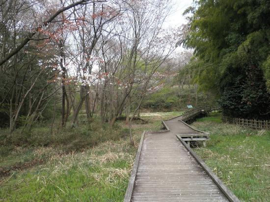 Kawasaki, Japonya: ほたるの里 遊歩道